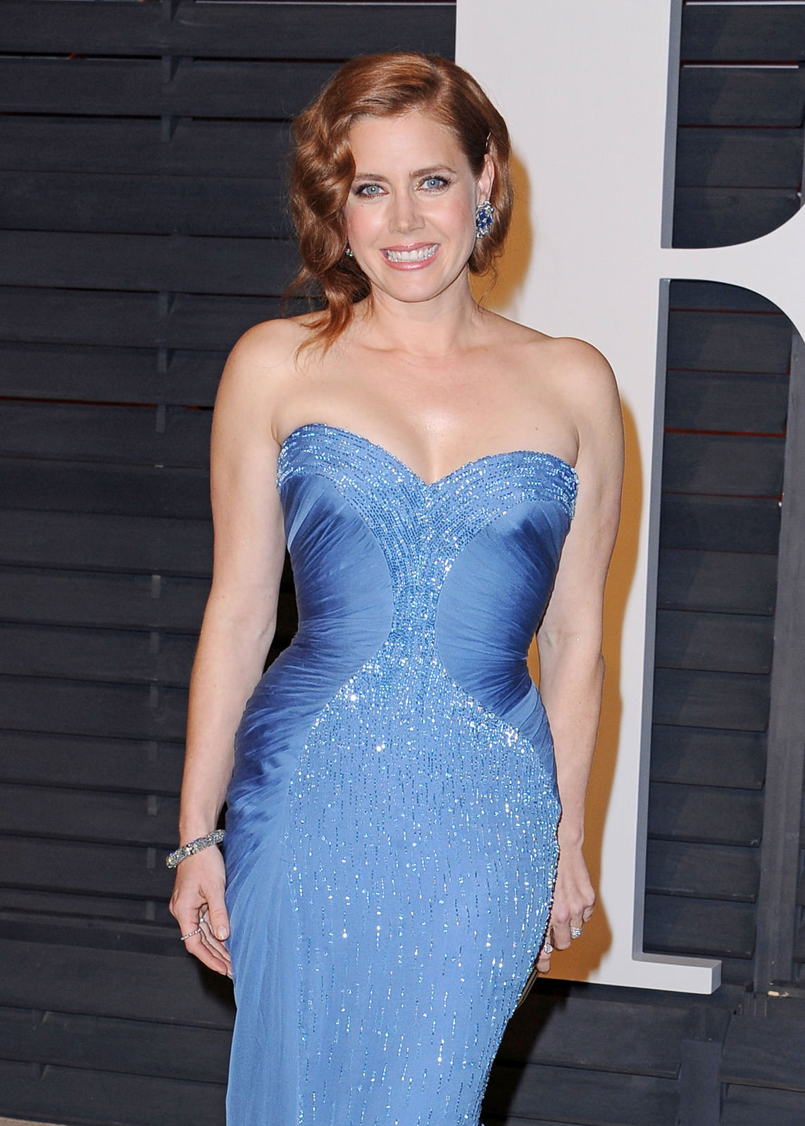Amy Adams Photo Gallery
