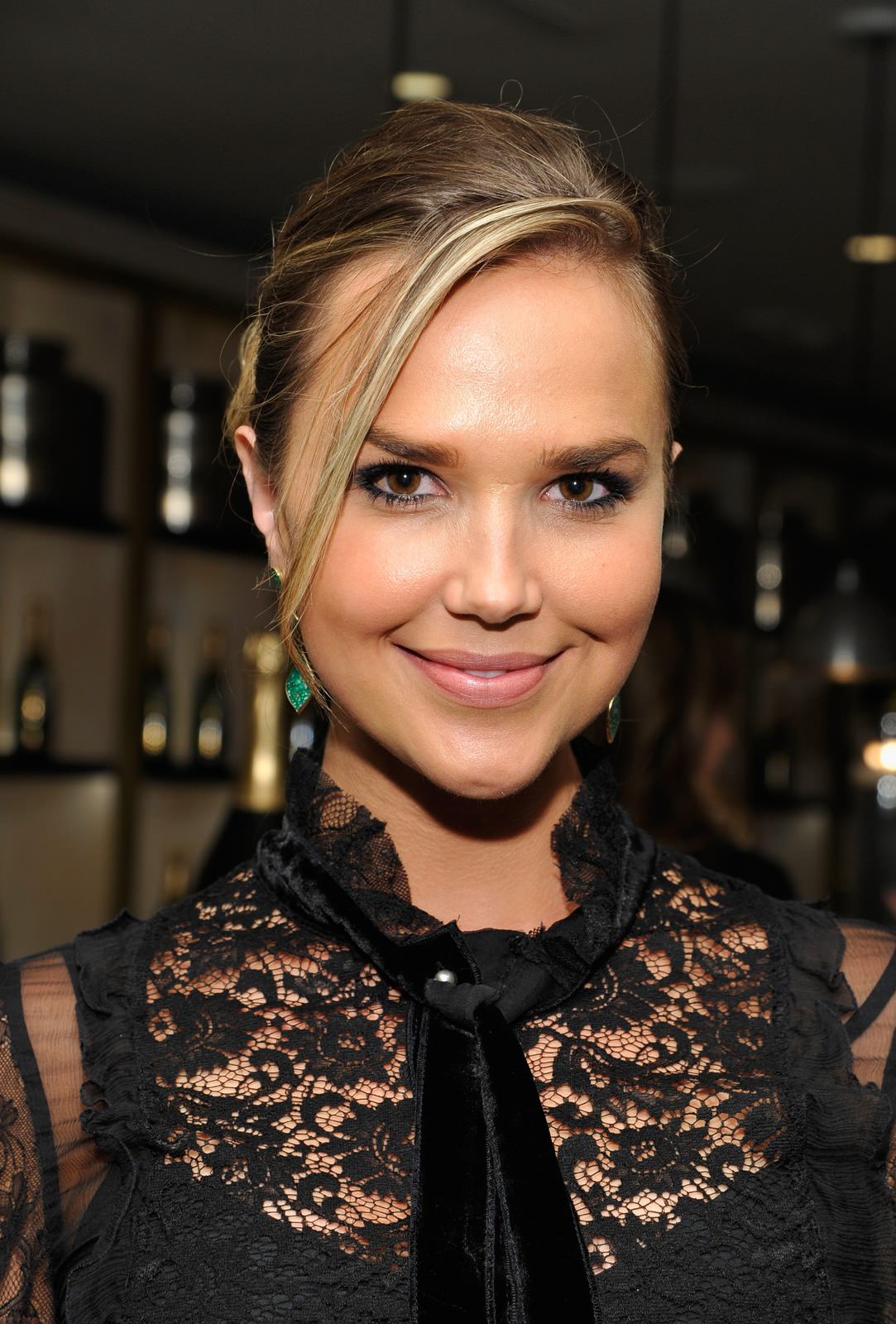 Arielle Kebbel Photo Gallery