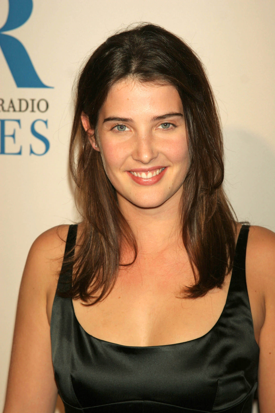 Cobie Smulders Photo Gallery