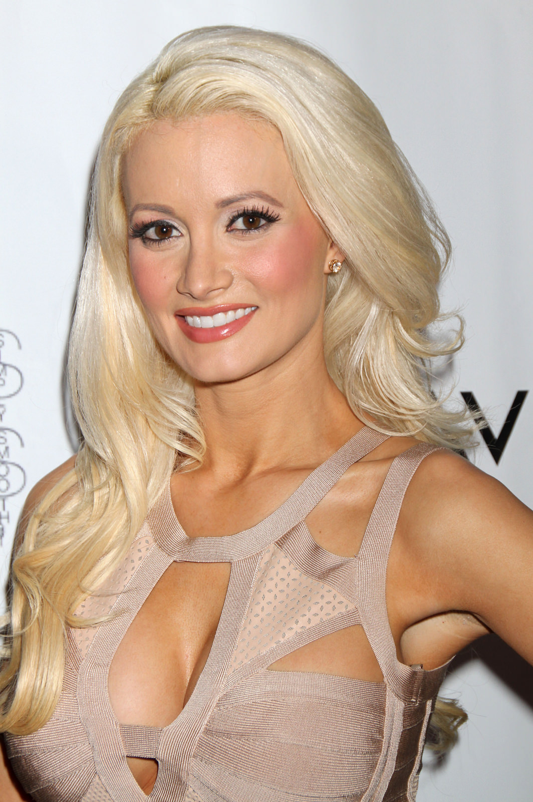 Holly Madison Photo Gallery