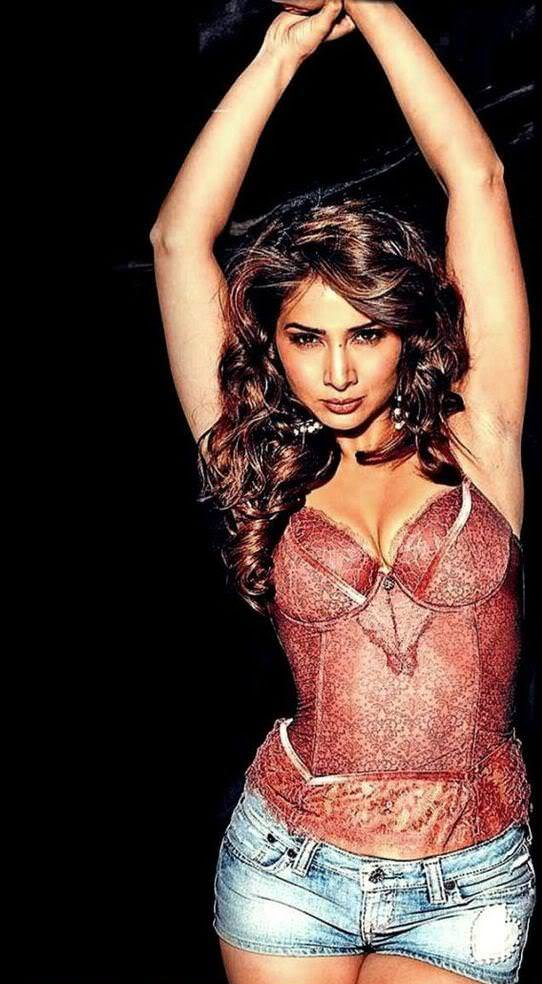 Kim Sharma Photo Gallery